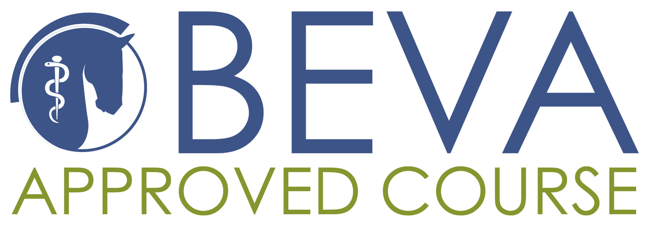 BEVA Approved Course